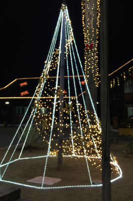 arvore de natal mangueira de led