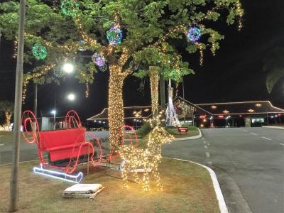 Decoração de natal treno de luz- Aluguel decoração de natal